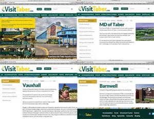 Screenshots of all four Visit websites.